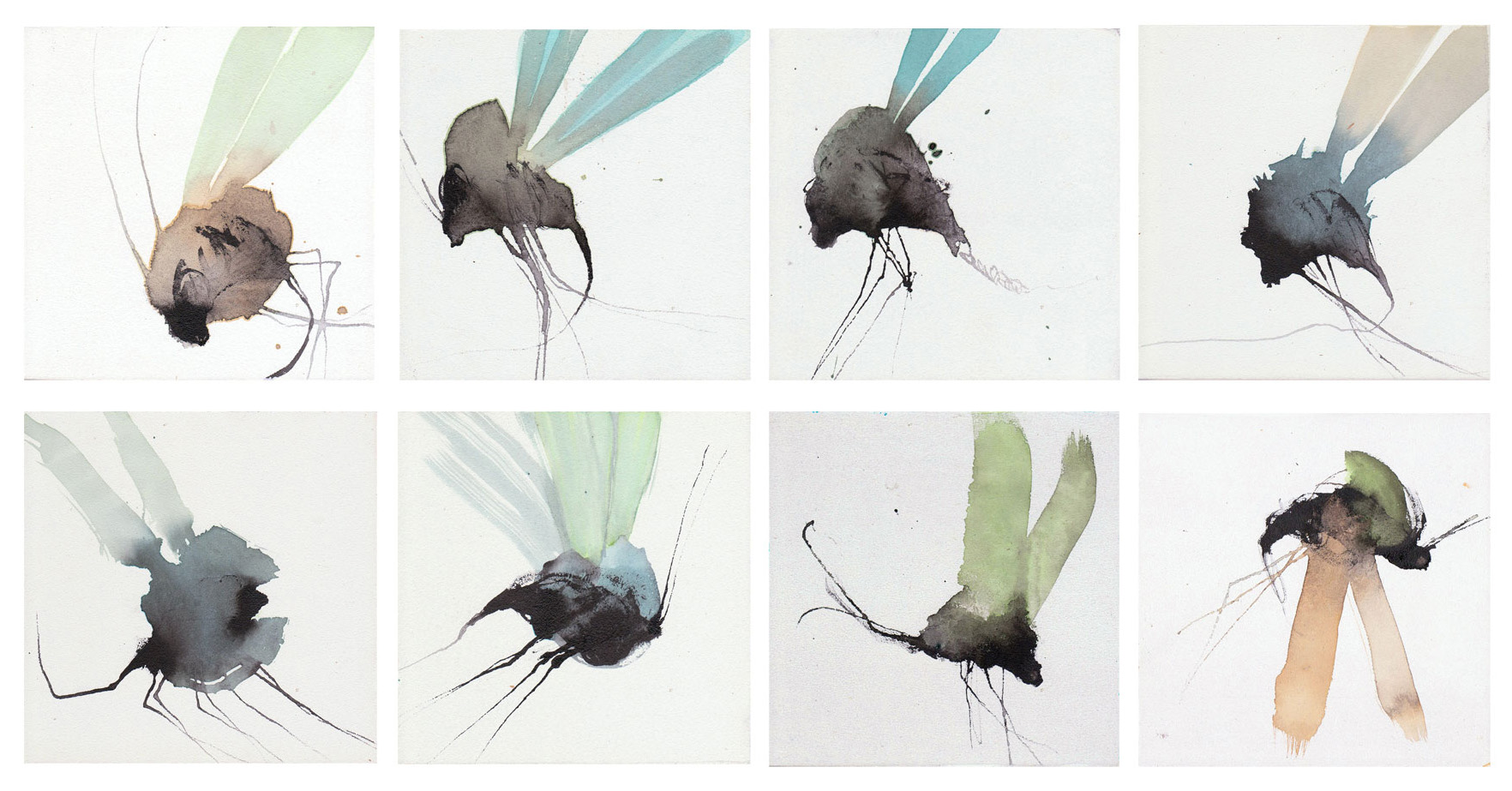 Arthropoda#serie-fly